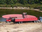 Cranberry harvest - Loading the fruit