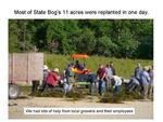 Most of State Bog's 11 Acres Were Planted in One Day