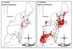 Northeast Invasive Plants Data by Tyler Cross, John T. Finn, and Bethany Bradley