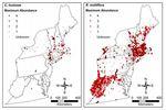 Northeast Invasive Plants Data